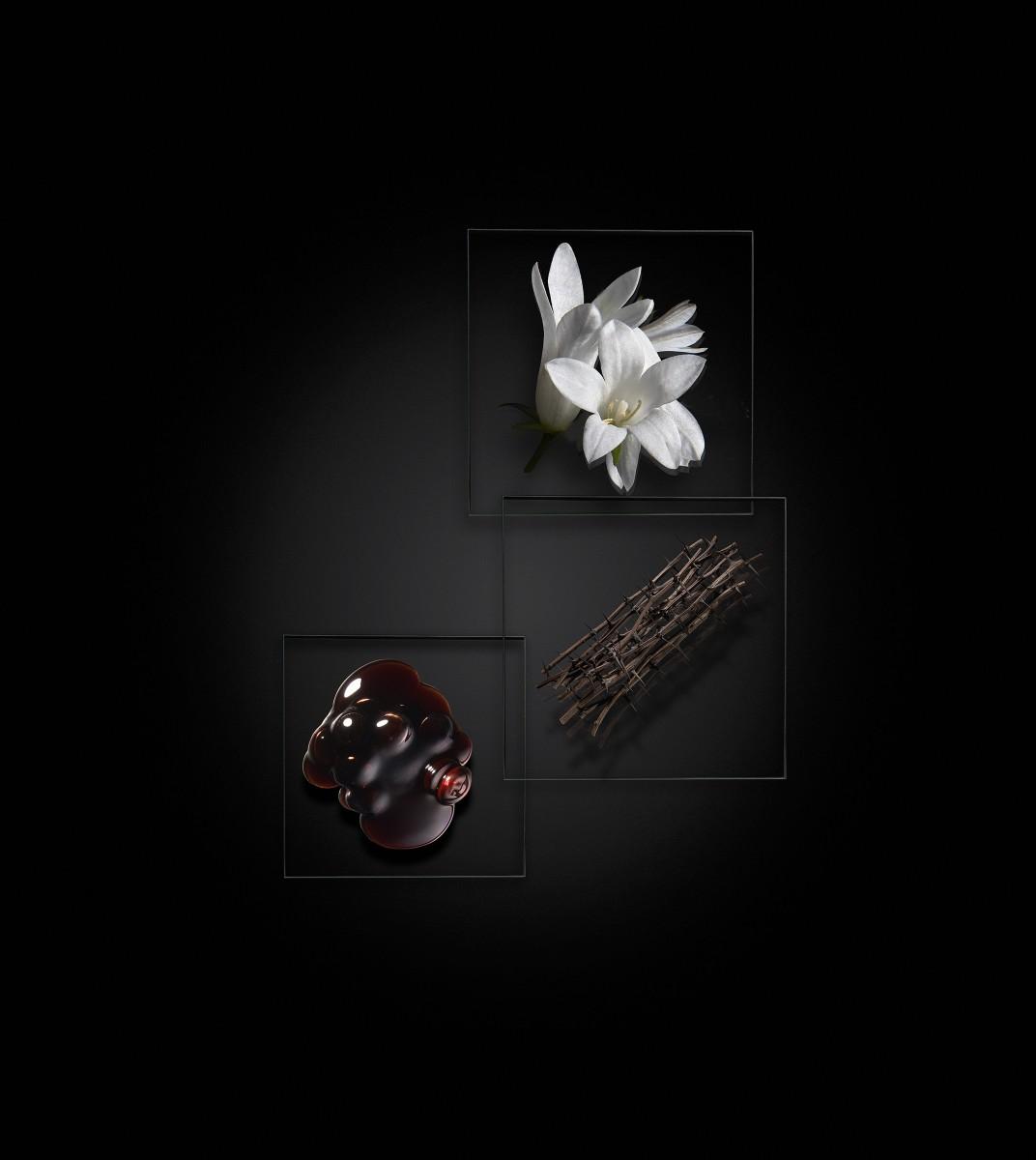 ARSENIC OSMAN - LM Parfums